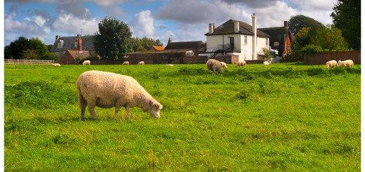 Landscape Photo of the Idyllic English Country Vilalge of Avebury