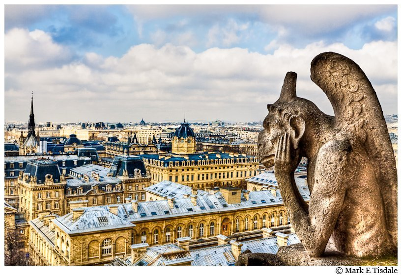 Parisian Skyline photo with a bored Gargoyle on Notre Dame Cathedral