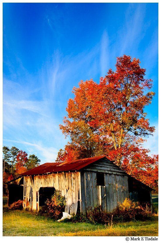 Photo of an old shed in North Georgia in the Autumn