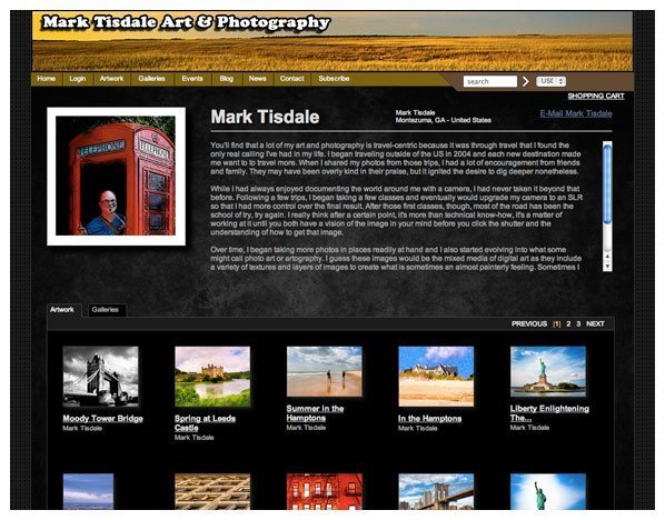 Screenshot of my Artist Website courtesy of Fine Art America
