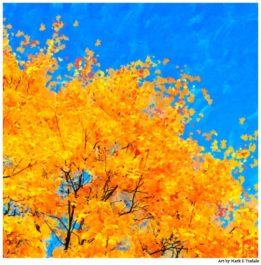 Fall Artwork - Cheerful Fall Leaves